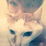 神山智洋の飼っている猫の名前